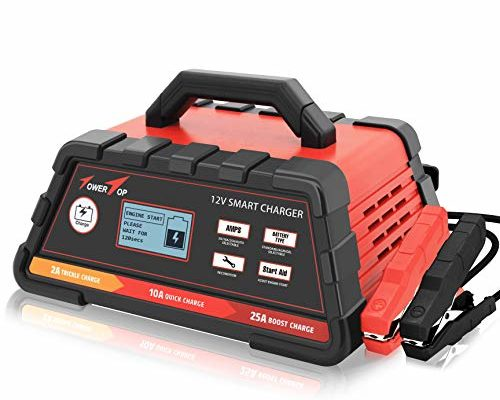 Top 10 Best Battery maintainer for cars reviews