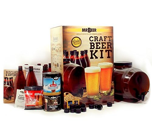 Top 10 Best Beer brewing kit reviews