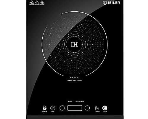Top 10 Best Portable induction cooktop reviews