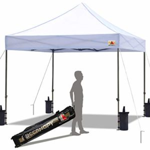 Best Pop up canopy 10 x 10 buying guide for you.