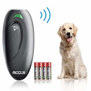Best list of Ultrasonic Bark Control Devices and Anti-Bark Deterrents to buy online.