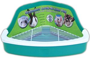 Best list of Litter boxes for rabbits to buy online.