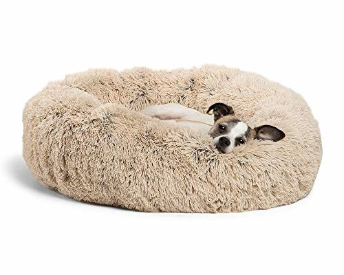 Top 10 Best Dog Beds reviews