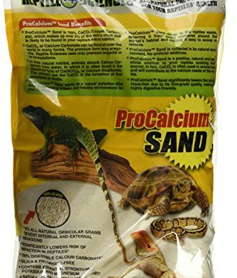 Best list of Sand for bearded dragons to buy online.