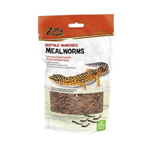 Best list of Food for leopard gecko to buy online.