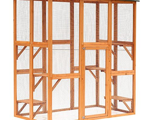 Best Outdoor Cat Enclosure review. Read this Outdoor Cat Enclosure buyer guide first