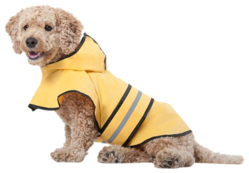 Top and Best Dog Raincoats reviews.