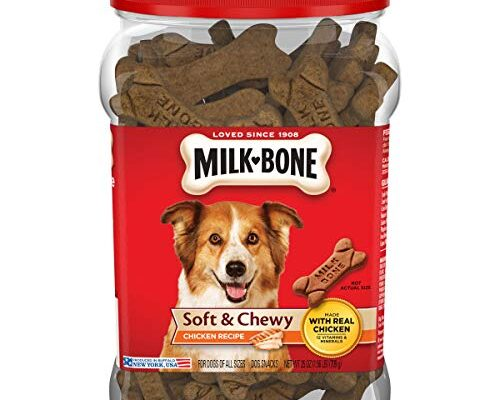 Top and Best Soft Dog Treats reviews.