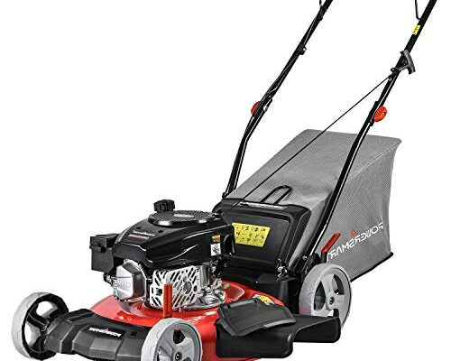 Best Gas Lawn Mowers review.