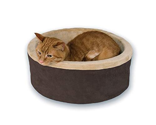 Top and Best Heated Pet Beds reviews.