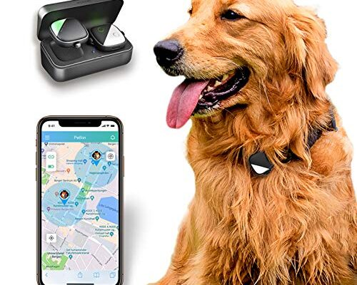 Top and Best Pet Trackers reviews.