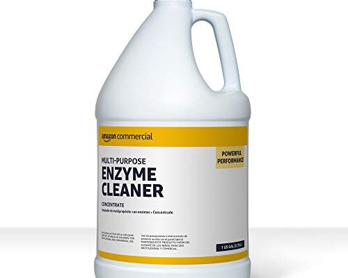 Best Enzyme Cleaner For Cat Urine Reviews.