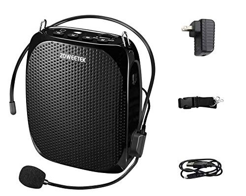 Best Small Voice Amplifier Reviews.