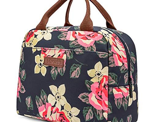Best Lunch Bags Insulated Reviews.
