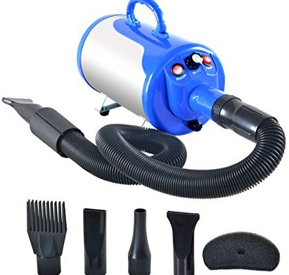 Best Dog Dryers Reviews.
